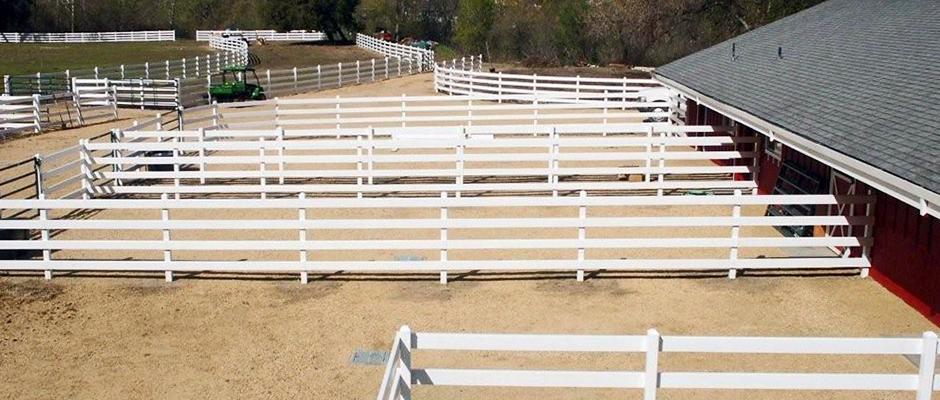 horse_fencing